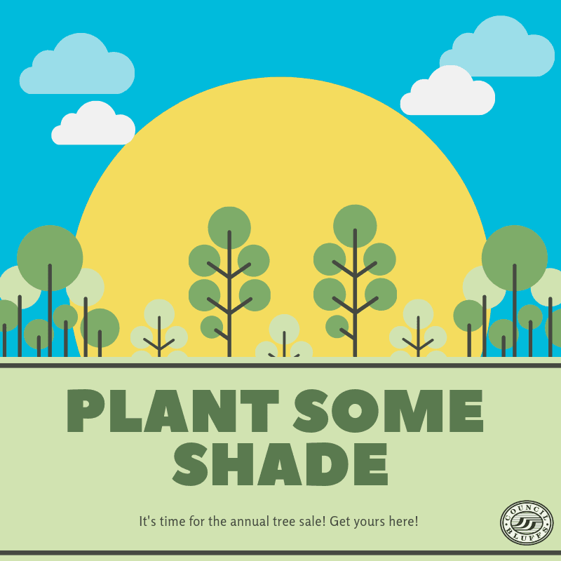 Plant some shade