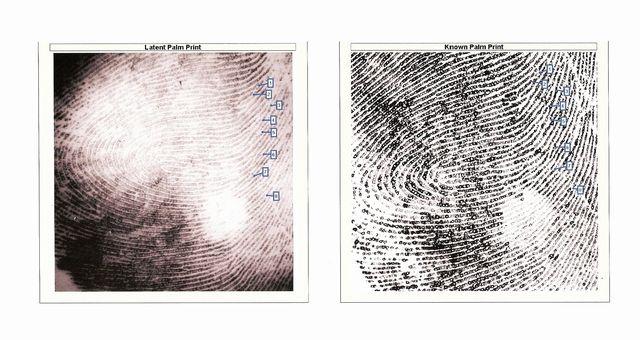 Palm print matches